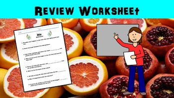 Skin No Prep Lesson with Power Point and Worksheet