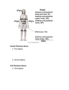 Skin Notes Outline Part B