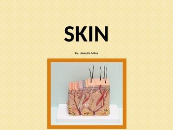 Skin PowerPoint