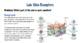 Skin Receptors Lab (Editable)