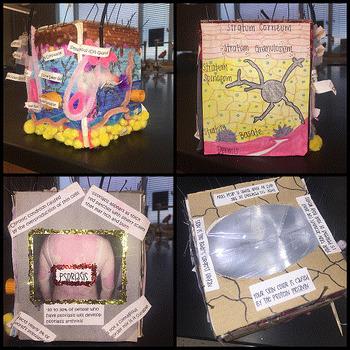 Skin Tissue Box Project
