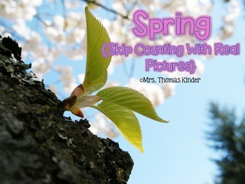 Skip Counting Puzzles {Real Spring Photos}