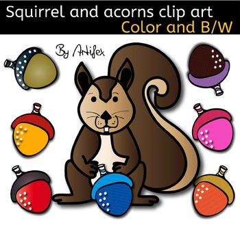 Squirrel and acorns - Color and black/white