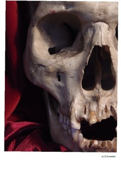 Skull Drawing Resource by Arty Teacher