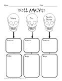 Skull Graphic Organizer