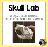 Food Chains Inference Lab with Skulls