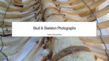 Skull & Skeleton Photographs