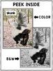 Close Reading Passage - Skunk Activities