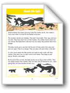 Skunk Life Cycle