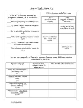 Sky Activity Sheets ~ Reader's Library ~ 4th Grade
