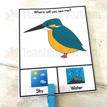 Sky v Water Sorting Categories Task Cards