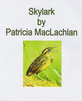 Skylark: All You Need