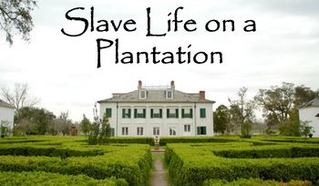 Slave Life on a Plantation PowerPoint