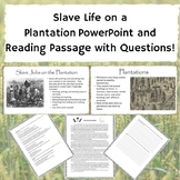 Slave Life on a Plantation PowerPoint and Reading Passage