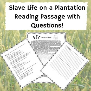 Slave Life on a Plantation Reading Passage w/ Questions