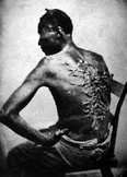 Slavery and The Compromise of 1850
