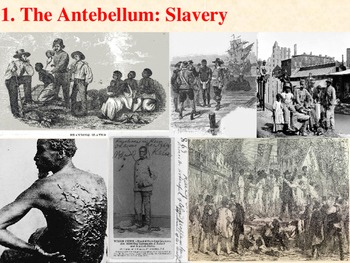 Slavery in the Antebellum Period