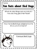 Sled Dogs Animal Research