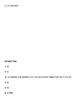 Sleepy Bear Major Assessment
