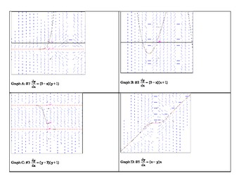 Slope Fields Graph Matching Activity