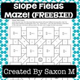 Slope Fields Maze (FREEBIE!)