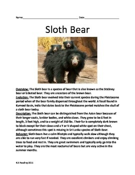 Sloth Bear - Informational Article Facts Questions Vocabulary Review