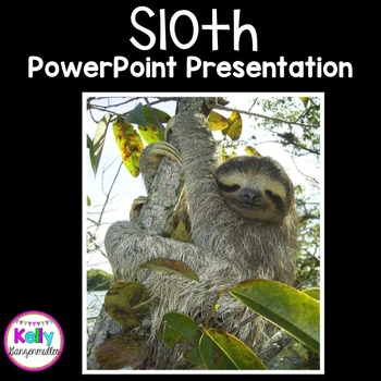Sloth PowerPoint Presentation