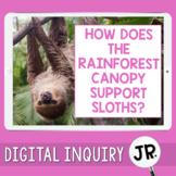 Sloths Digital Inquiry Jr.  |  3rd Grade