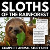 Sloth Unit | Animal Study | Rainforest Animal Unit | Research Project