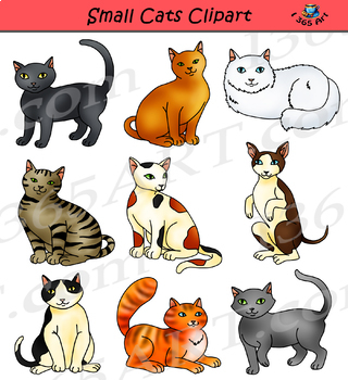 Small Cats Clipart - Cute House Cats Graphics Set