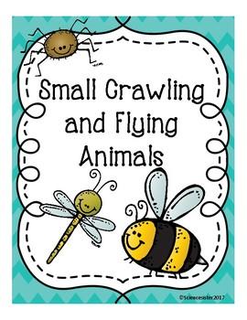 Small Crawling and Flying Animals Alberta