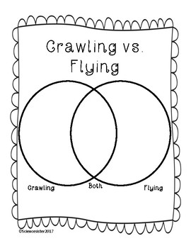 Alberta: Small Crawling and Flying Animals