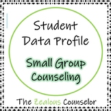 Small Group Summary--Great for Organization!
