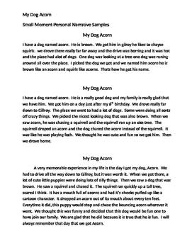 Small Moment Personal Narrative Mentor Texts Dog Acorn