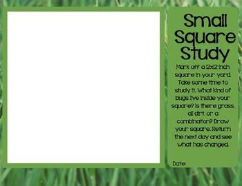 Small Square Study Record Sheet