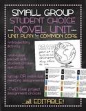 Small group (literature circle/book club) student choice novel unit