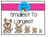 Smallest To Largest - Dogs, Cats, And Turtles
