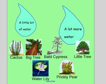 Smart Board Plants Lesson