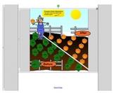 Smartboard Attendance-Animated Pumpkin Patch-Fall Season