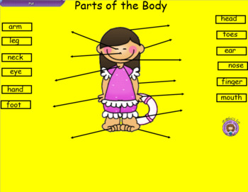 Smartboard Parts of the Body Labeling