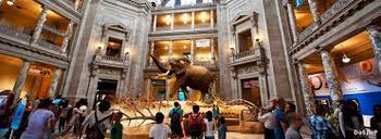 Smithsonian & Google Map Web Field Trip Questions