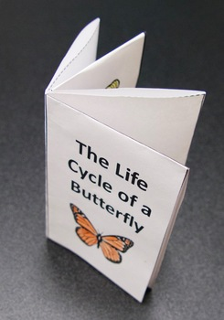 Life Cycle of a Butterfly Smoosh Book and Worksheets