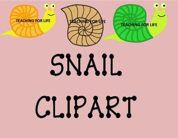 Snail Clip Art Illustrations