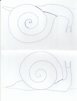 Snail Coloring Half Sheets
