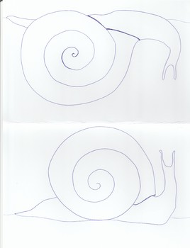 Snail Coloring Half Sheets