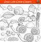 Snail Life Cycle Clipart