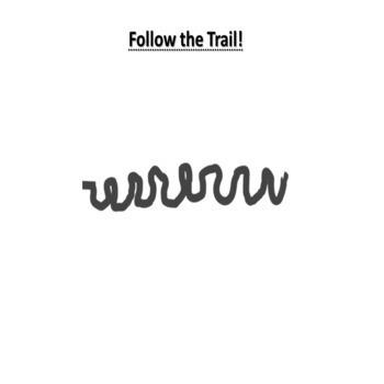 Snail, Snail Creative Trail