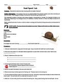 Snail Speed Lab
