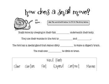 Snails Investigation Journal!