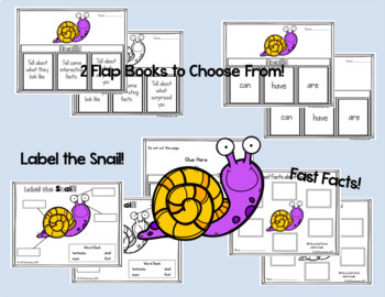 Snails Writing Flap Books, Fast Facts Printable and Label a Snail!